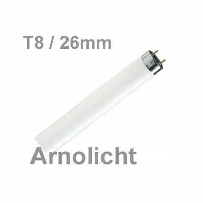 38W/640-020 coolwhite Stand.-Leuchtstofflampe T8,38Watt - 1